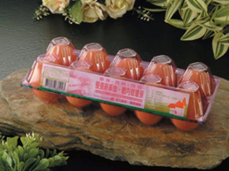 PLA Egg Box-AK1M (PLA 10粒裝蛋盒)
