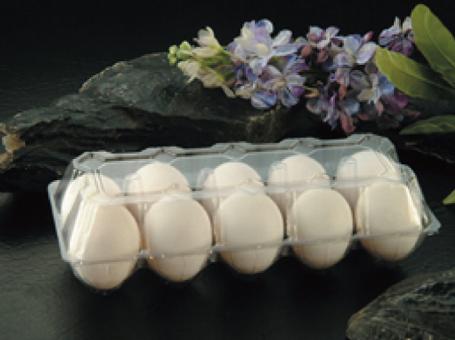 PLA/PVC Egg Box 一次性蛋盒- VT10