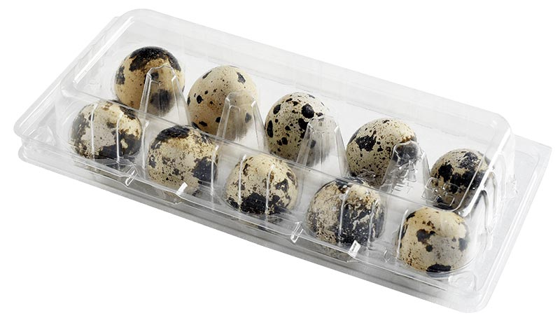 PLA/PET 10pcs Quail Egg Box 鵪鶉蛋盒- 10入