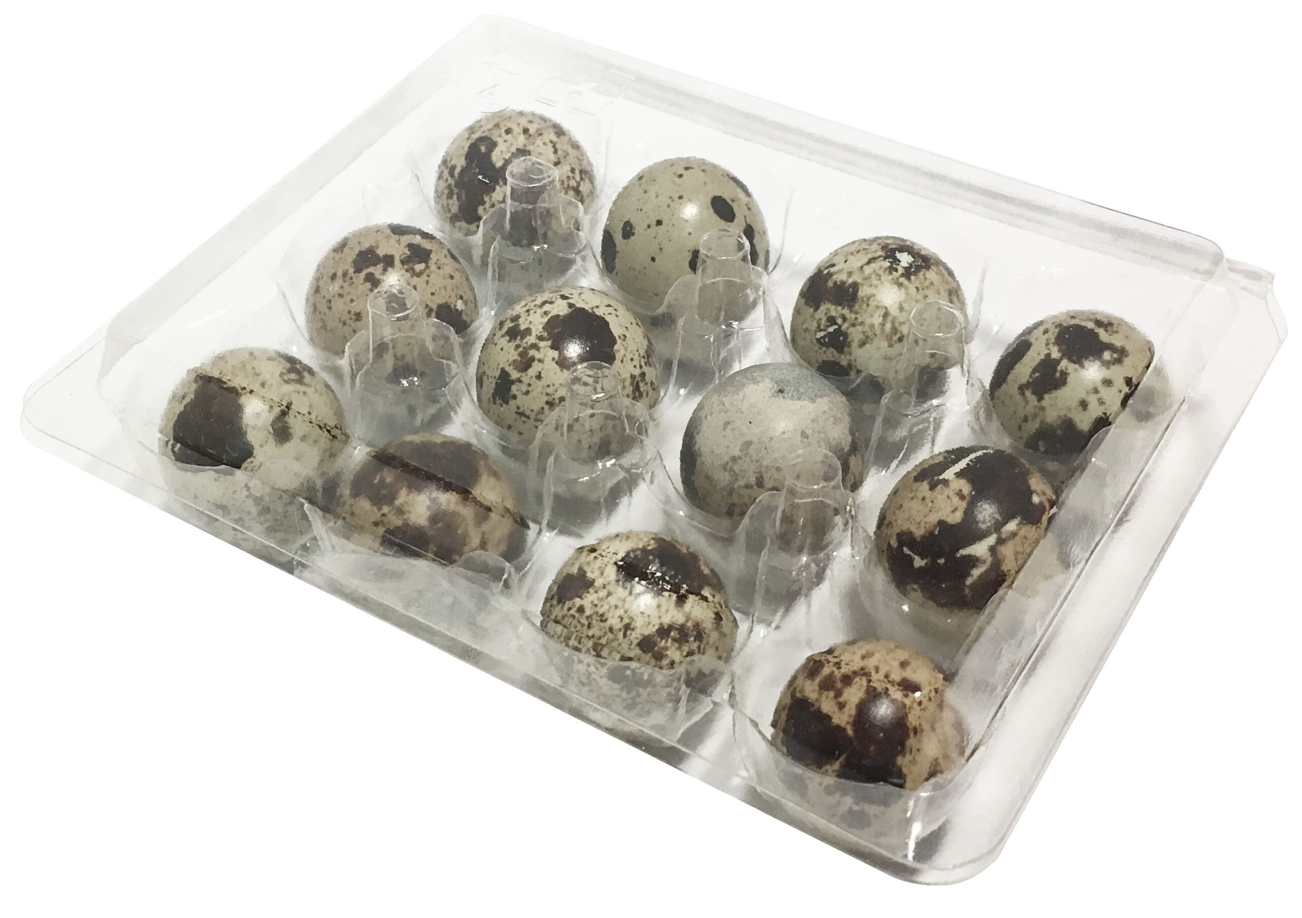 PLA Quail Egg Box (PLA 12粒裝自釦式鵪鶉蛋盒)