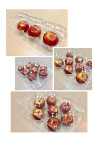Fruit Clamshell Box